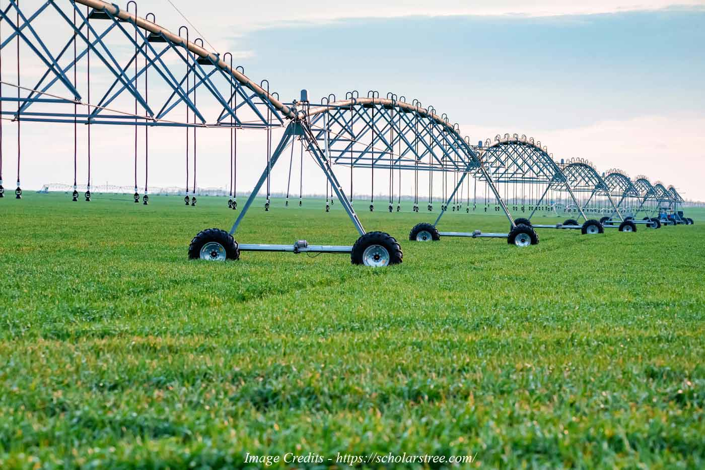 Future of Agriculture – New Trends in Agriculture 2021